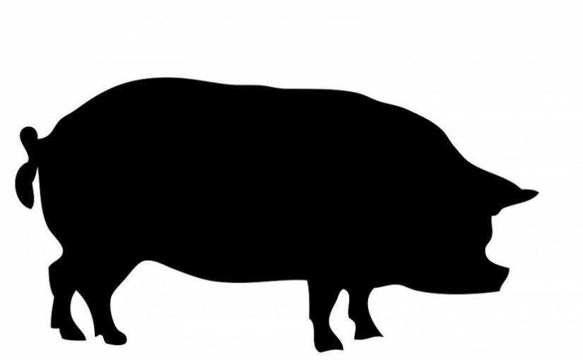 Ini Mengapa Perusahaan Obat Banyak Pakai Gelatin dari Babi