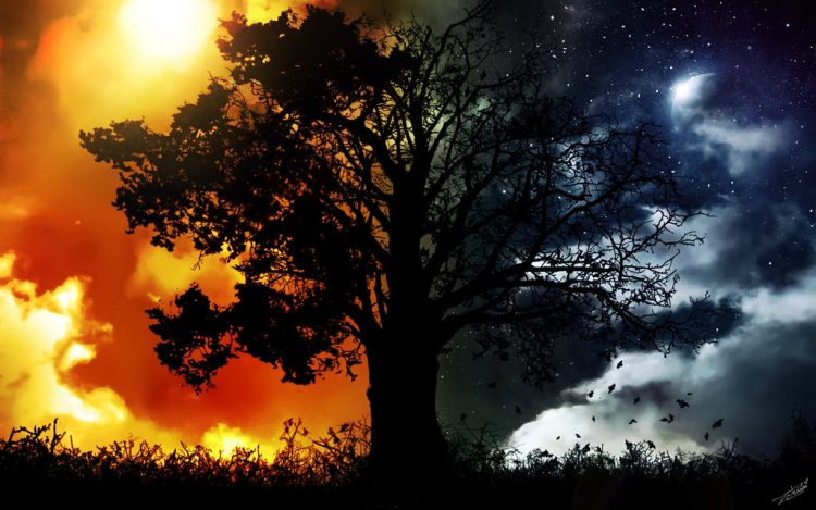 Rasulullah Saw Bagai Rembulan dan Matahari
